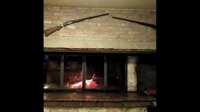 Камин kamin fireplace живойогонь домашнийуют ружья жилойкомплекс Шкорпиловци gun жильеуморя Gewehr  teremlux.