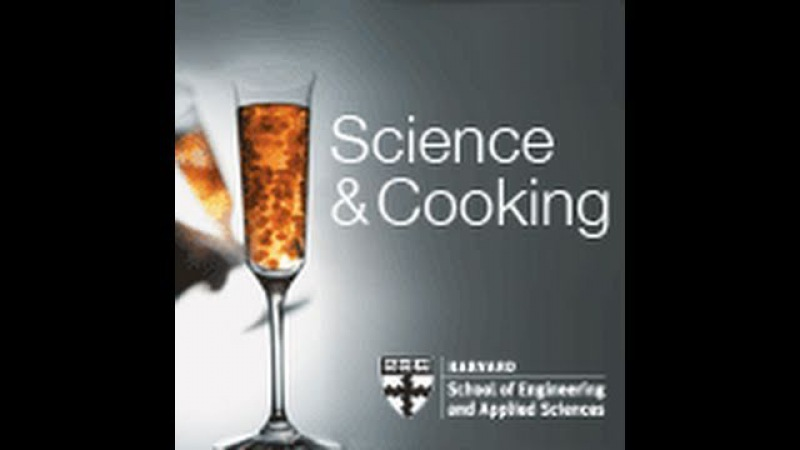 Reinventing Food Texture Flavor | Lecture 6 (2010)