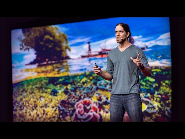 Could fish social networks help us save coral reefs? | Mike Gil