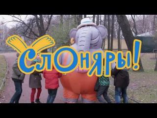 Слоняры. Выпуск №1 | Интересные места Санкт-Петербурга