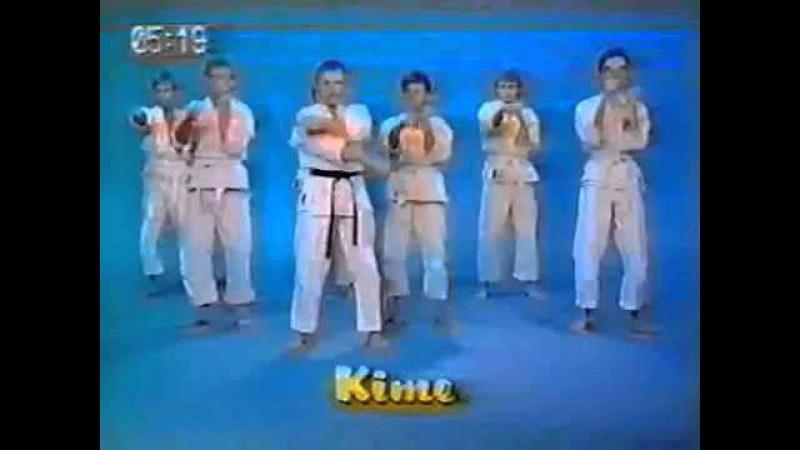 Каратэ Шотокан Альбрехт Пфлюгер Karate Shotokan