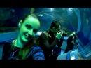 Планета Нептун первый океанариум в Санкт Петербурге