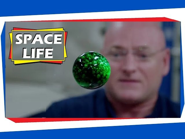 Journey to Mars Overview - Life In Space: Living On The ISS - YouTube