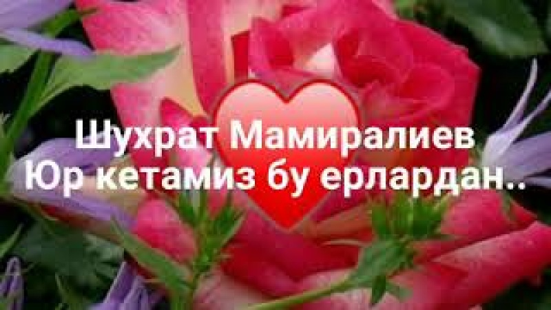 Шухрат Мамиралиев - Юр кетамиз..