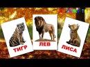 Карточки Домана - Животный мир 100 карточек. Первые слова для малыша 1-3 года. 100 первых слов для