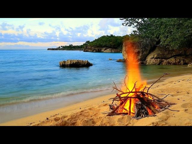Relaxing Music 24/7 Amazing Nature Videos 💚 Sleep Music, Meditation Music, Study Music