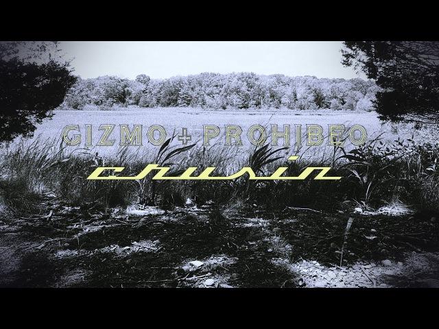 Gizmo Prohibeo - Cruisin prod purpdogg (OFFICIAL MUSIC VIDEO)