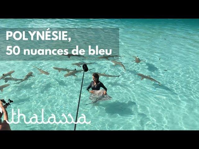 50 оттенков синего. Очень хороший репортаж о Французской Полинезии. Он правда на французском языке, но картинки впечатляют