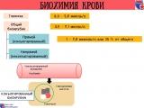 Биохимический анализ крови в норме и при патологии.