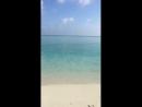 Доброго ранку з сонячних Мальдів
