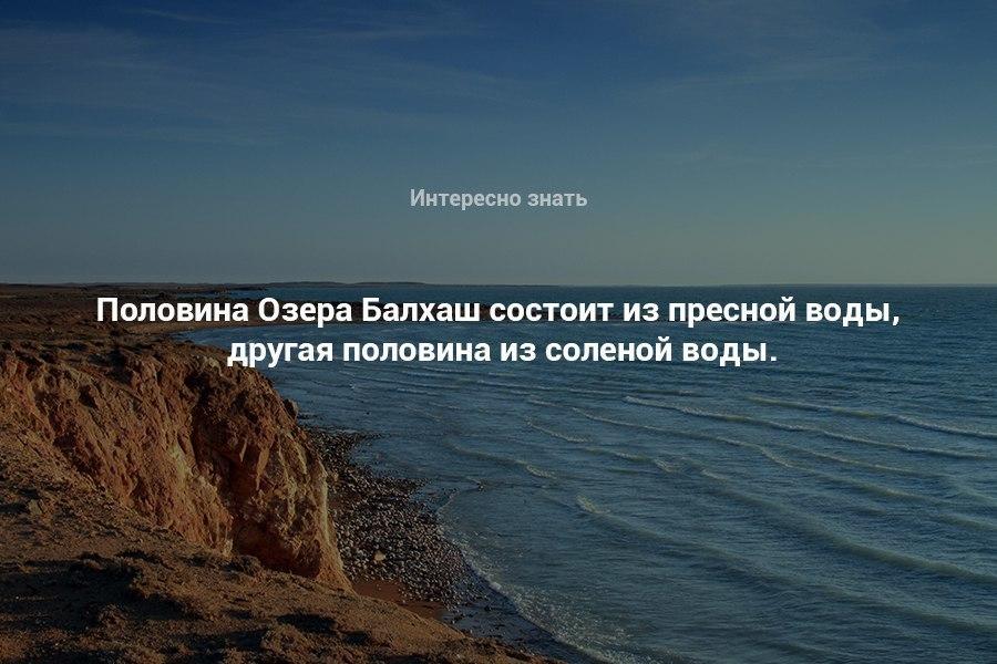 https://pp.userapi.com/c840120/v840120201/73ae1/tjjpp_Tvvlo.jpg