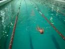 Наши первые соревнования по плаванию