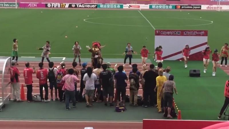 Tacoyaki Rainbow - Cerezo Osaka VS Kashima Antlers [2017.08.26]