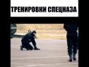Тренировки спецназа ММА 95 БОИ БЕЗ ПРАВИЛ