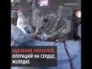 Робот-хирург Да Винчи