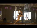 Выступление на Новогоднем отчетном концерте ученицы Pole Fox Dance Studio Ксении Тульской
