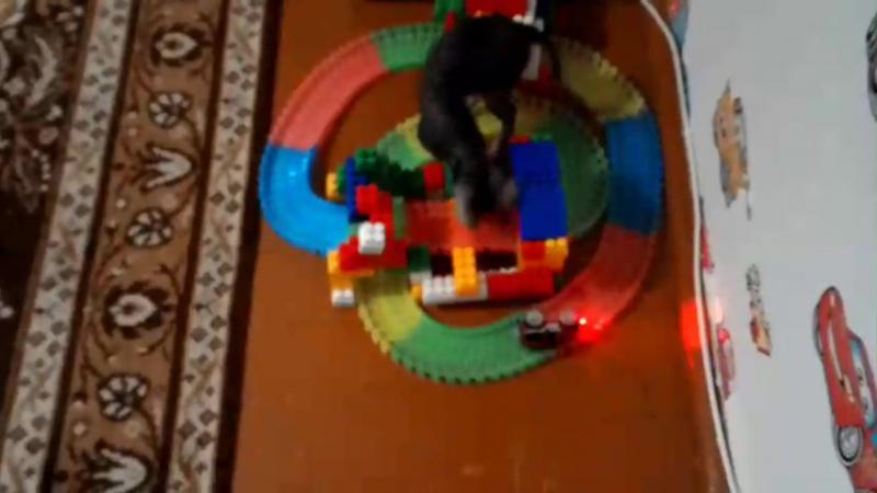 Бусинка играет с машинкой