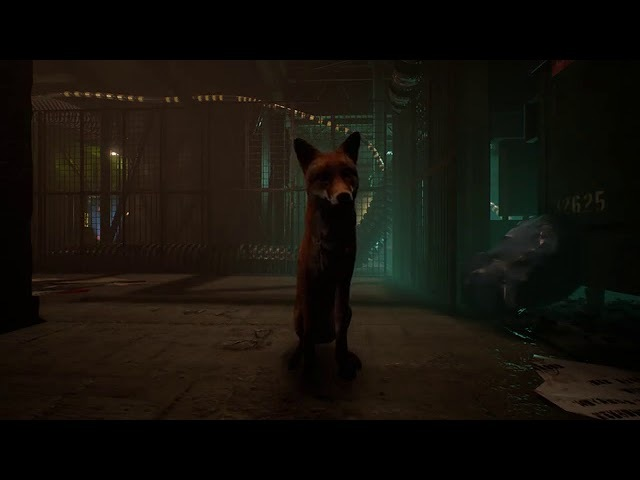 The End - You're a fox in a cyberpunk world.