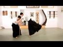 How to Do Tachi Tori Aikido Lessons