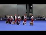 Веселые пастушки и молочник (Интернациональная выставка собак
