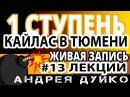 ⚜ 13 Андрей Дуйко 1 ступень ШколаКайлас в Тюмени ⚜ Эзотерика бесплатно