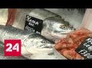 Почему она дорожает или уходит Путь красной рыбы с Востока на Запад