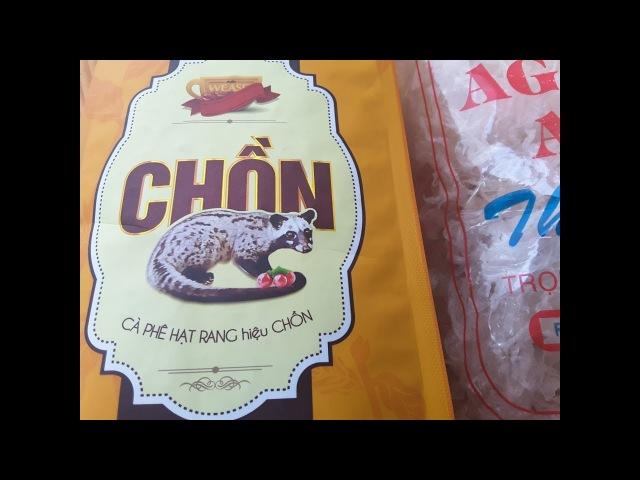 Кофе Лювак из Вьетнама, зверек питается кофейными зернами, из ка.. добывают кофе » Freewka.com - Смотреть онлайн в хорощем качестве