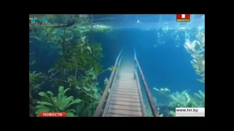 В Бразилии из-за наводнения заповедник ушёл под воду
