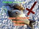 Ловля карася на Кресты, Самоловы, Перевертыши, Зимняя рыбалка