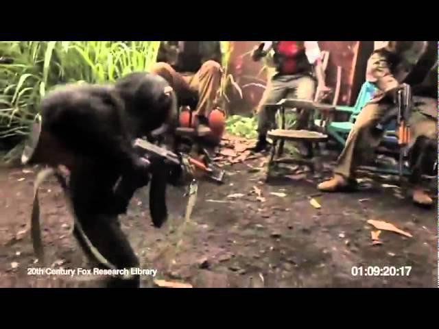 Обезьяна с автоматом [ Monkey with AK-47 ]