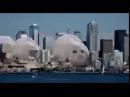 Прыгающие тюлени прикол психоделика 1 час часовая версия