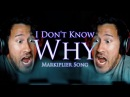 I DON'T KNOW WHY (Markiplier Remix) | Song by Endigo