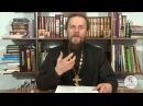 Книга Бытие Глава 8 Иеромонах Никодим Шматько Библейский портал