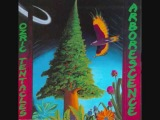 Ozric Tentacles - There's A Planet Here