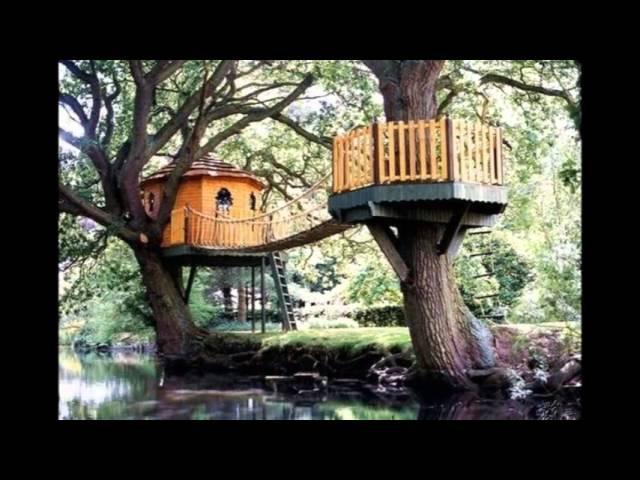 Необычные домики на дереве. Симпатичные детские домики на дереве своими руками