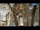 Ночная перестрелка в Юбилейном Серьёзное ранение в живот получил очевидец Вести Иркутск