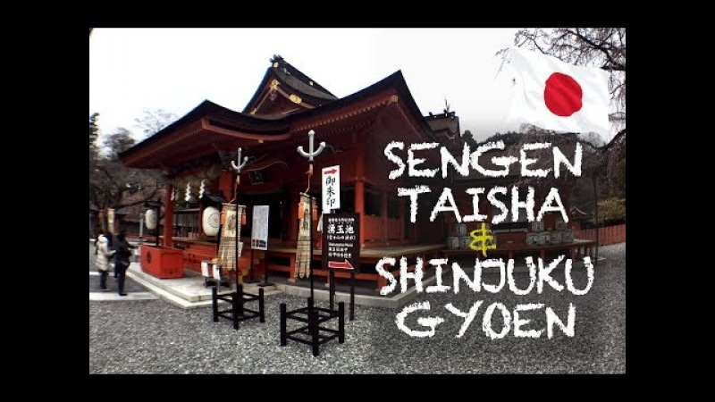 FUJISAN SENGEN TAISHA SHINJUKU GYOEN sightseen | JAPAN 2018