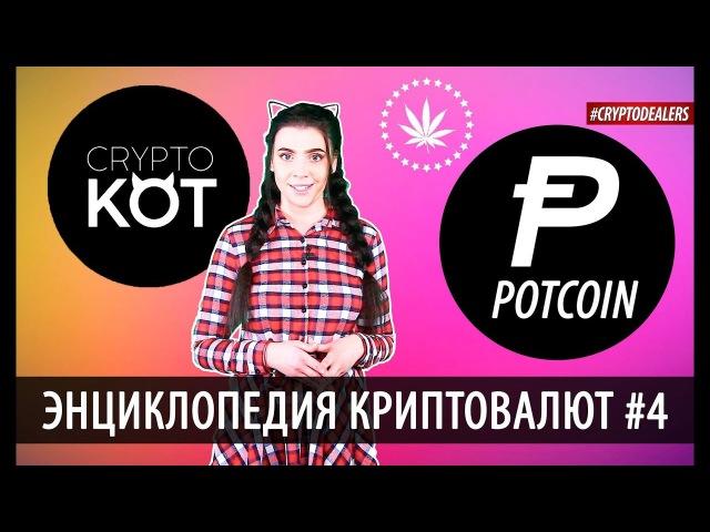 Что такое криптовалюта Potcoin Криптовалюта для легальной индустрии марихуаны Crypt