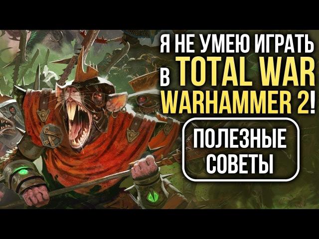 Я не умею играть в Total War: WARHAMMER 2! Полезные советы