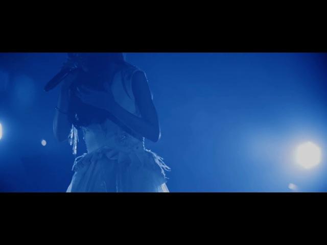 Aimer『Brave Shine』Aimer Live Tour DAWN