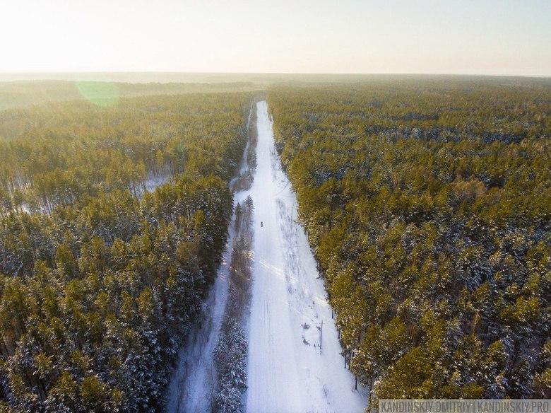 Житель Томской области 2 месяца прятался в лесу от полиции