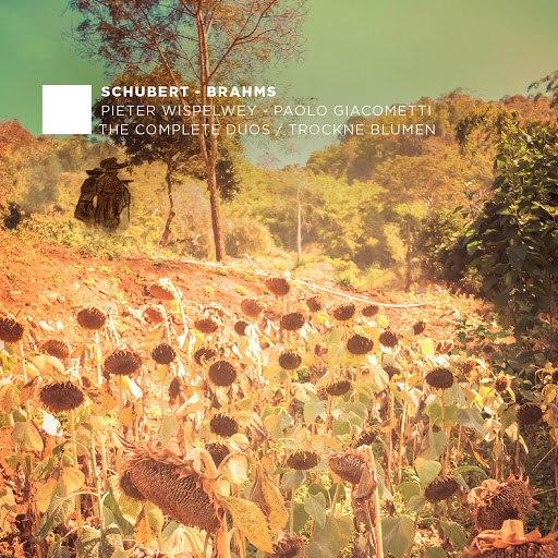 Pieter Wispelwey альбом F. Schubert, J. Brahms: The Complete Duos - Trockne Blumen