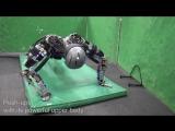 Как робот поддерживает свою физическую форму