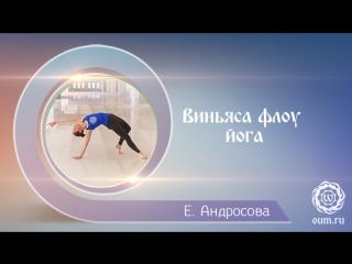 Виньяса флоу йога. Комплекс для начинающих. Екатерина Андросова