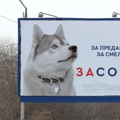 Ил Вишневский