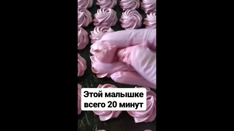 VID_101850305_074804_227.mp4