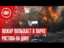 Пожар полыхает в парке Ростова-на-Дону