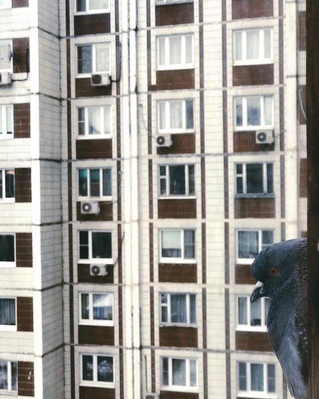 Кир Агашков | Москва