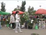 ГТРК ЛНР. Вести-экспресс. 23 августа 2017