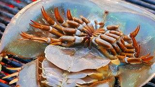 Thailand Street Food - HORSESHOE CRAB EGGS